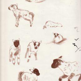 sketchbookscotland_0002